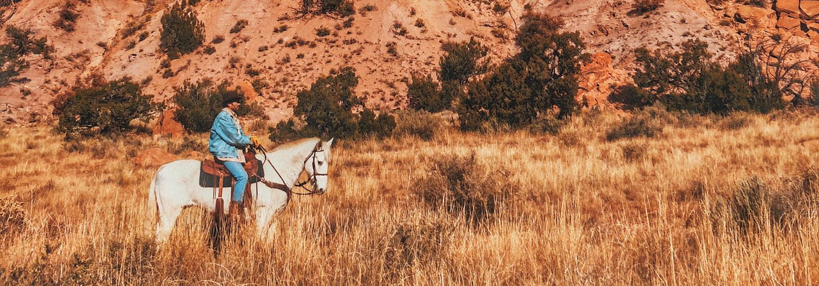 Cowboy3 image slide